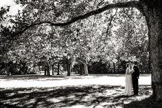 Paarshooting in prächtigem Park mit beeindruckendem Baum.
