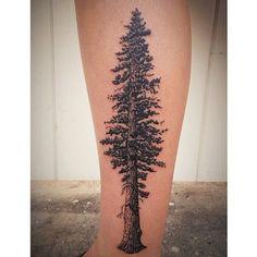 Redwood tree tattoo by James Tran – Full Circle Tattoo – San Diego, CA. Arrow Tattoos, Rose Tattoos, Leg Tattoos, Tattoos For Guys, Tree Sleeve Tattoo, Back Tattoo, Sleeve Tattoos, Redwood Tattoo, Pine Tattoo