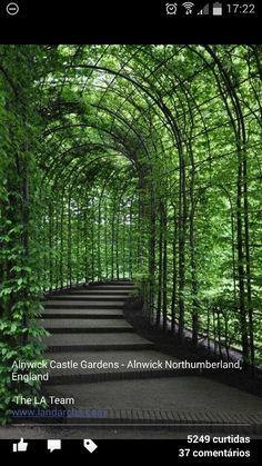 Anlwik Castle Gardens