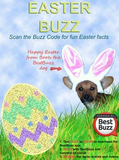 Easter qr code fun on pinterest easter bunny easter for Easter egg fun facts