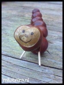 Chestnut crafts: make a caterpillar from horse chestnuts - knutselen met kastanjes: maak eens een rups van kastanjes en cocktailprikkers