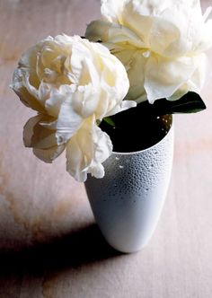 White Coral Vase by Ted Muehling, porcelain white biscuit