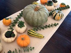 A fall tablescape with pumpkins and succulents. Perfect for a festive gathering! #TrickOrTrims