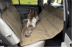 """Hammock Car Seat Pet Protector – Petiquette Dogs - Constructed with extremely durable polyester """"canvas"""" while the underside is made with an anti-skid mesh so your seat protector will stay put. Your dog will be safe and secure and your vehicle's interior will be protected with this pet seat cover. The Hammock Seat Protector has ingenious neoprene belts the keeping the two lower corners solidly anchored to the seat. """"Like"""" or """"Pin"""" this and use discount code """"Pin5"""" for 5% off."""