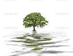 oak tree logo design   Cart Lightbox Share Facebook Twitter Google Pinterest