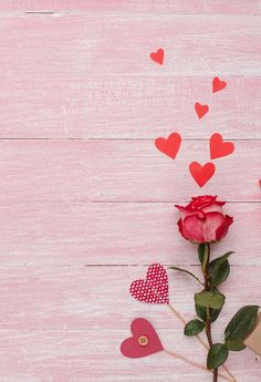 Red Rose Love Heart Backdrop for Valentine's Day Photography J03234