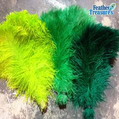 Best quality ostrich feather- drabs and plumes. Buy #ostrichfeathers at great prices from Feather Treasures. http://www.feathertreasures.com/collections/12-ostrich-feathers