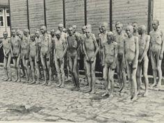 Revelan fotos inéditas del campo de concentración nazi Mauthausen | Las fotos del horror de Mauthausen, setenta años después de la liberación