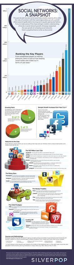 Como anda a saúde das redes sociais e as tendências para 2013.