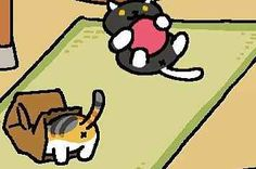 12 Faces Only Neko Atsume Fans Will Understand