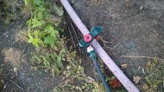 Drip irrigation hose in place of a garden hose.