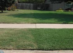 Left no treatment compared to treated right side. Outdoor Areas, Lawn Care, Flower Beds, Sidewalk, Flower Borders, Walkways, Garden Beds, Pavement, Flowers Garden