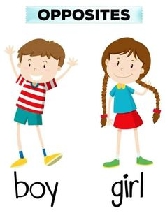 Opposite words for boy and girl Free Vector Vector English Worksheets For Kids, English Lessons For Kids, Learning English For Kids, English Activities, English Language Learning, Preschool Worksheets, Teaching English, English Opposite Words, Learn English Words