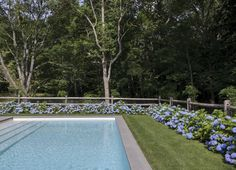 Swimming Pool of the Week: Dreaming in Blue at a Stylist's Hamptons Compound: Gardenista. Love the hydrangeas around the pool -- lovely Backyard Pool Landscaping, Pool Fence, Texas Landscaping, Landscaping Edging, Farmhouse Landscaping, Modern Landscaping, Landscaping Ideas, Hampton Pool, East Hampton