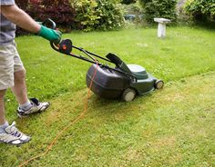 7 Lawn Care Tips for Greener Grass