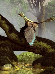 Title: The Last Dinosaur  Artist: Daniel Eskridge  Medium: Digital Art - Digital    Description:    Archaeopteryx is a creature that seems to be half bird, half dinosaur. He is featured in this latest of my paleo art series. It lived in the Late Jurassic Period around 150 million years ago and it seems to represent the transition from dinosaur to bird. As a result I've called this image The Last Dinosaur.