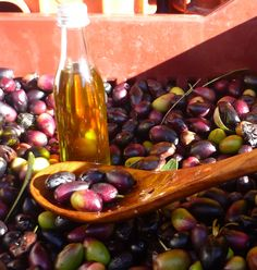 Fresh olives and extra vergin olive oil in Sparta, Greece!
