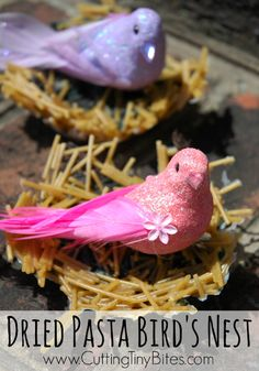 Bird Nest Craft for Kids. Made from dried pasta and yarn. Fun for preschoolers and elementary children.