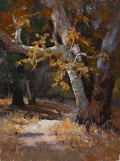 Santiago Trail by Jim Wodark Oil ~ 16 x 12
