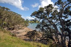 Coopers Beach, Northland, New Zealand New Zealand, Bliss, Coast, Country Roads, River, Beach, Places, Outdoor, Outdoors