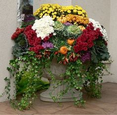Fall Container Gardens at ModVintageLife.com