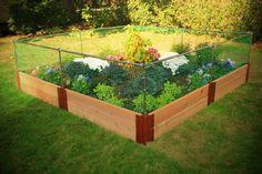 Raised Vegetable Garden Layout Plans | vegetable-garden-fencing
