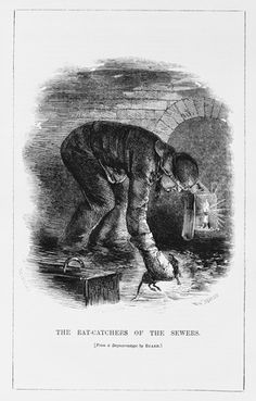 sewer rat catcher 1861