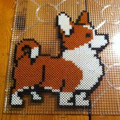 Dog hama perler beads by eriksson_malin