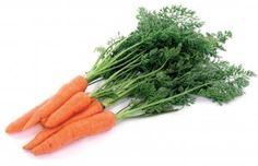 Article: How to grow carrots