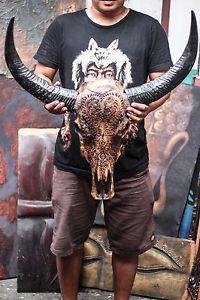 REAL-HAND-CARVED-BUFFALO-SKULL-amp-HORNS-Taxidermy-antlers-longhorns-steer-bull