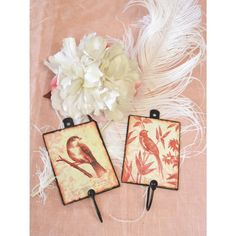 Darling Red and Cream Decorative Bird Wall Hooks from thebellacottage  >how darling! #bellacottagelove