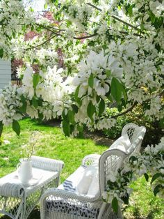gardens furniture The Wicker House: White Blossoms and Wicker. Would love to be sitting here read. The Wicker House: White Blossoms and Wicker. Would love to be sitting here reading a book!