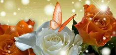 Belleza floral