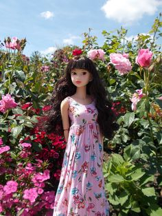 The World's newest photos of 16an and momoko - Flickr Hive Mind