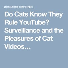 Do Cats Know They Rule YouTube? Surveillance and the Pleasures of Cat Videos… Media Influence, Cat Gif, Social Media, Journal, Cats, Videos, Youtube, Gatos, Social Networks