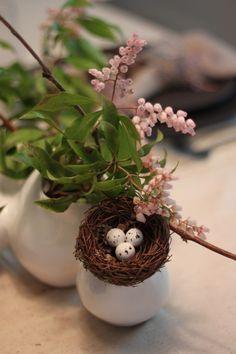 * wunderkammer *: Pascua / Ostern / Easter
