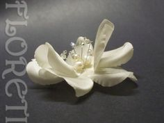 Hey, I found this really awesome Etsy listing at https://www.etsy.com/listing/45002886/couture-light-ivory-dogwood-rose-silk
