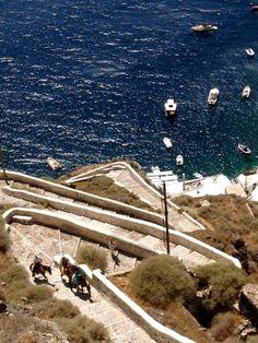 Gorgeous, unsual shot of Santorini, #Greece from an AFAR.com Highlight: All donkeys lead to baklava by Collier Lumpkin