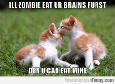 Om Nom Brainz Nom - LOLcats is the best place to find and submit funny cat memes and other silly cat materials to share with the world. We find the funny cats that make you LOL so that you don't have to. Funny Cute Cats, Silly Cats, Funny Cat Memes, Funny Kittens, Animals Images, Animal Pictures, Funny Animals, Cute Animals, Cat Paws