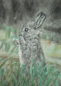 Original Pastel Painting 'Bunny in the Grass' £15.00