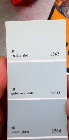 Bedroom paint pick. Benjamin Moore 'healing aloe'