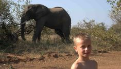 Our writer, Katherine, (bravely) goes on safari with 5 kids between 14 and 5 years old. Here she shares what she learnt. And how they learnt.  Contact us at info@africanbudgetsafaris.com to inquire about kid-friendly safari experiences.