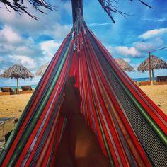 "I think I have a thing for hammocks 😎👌🏼#hammock #missthebeach #goodtimesinpanama"" #redfrog #beach #sunshine"