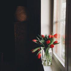 Тюльпаны. #весна #spring