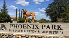 ZoePhee: Phoenix has her own park! Wordless Wednesday