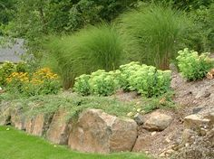 Learn all about landscaping steep slopes, planting design and types for hillside landscaping, landscape paths and steps, terracing Landscaping With Boulders, Landscaping On A Hill, Driveway Landscaping, Landscaping Ideas, Landscaping Software, Residential Landscaping, Farmhouse Landscaping, Green Landscape, Landscape Design
