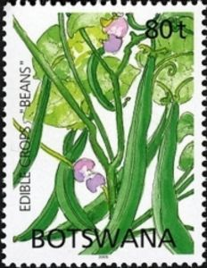 Sello: Beans (Botswana) (Edible Crops) Mi:BW 813,WAD:BW005.05