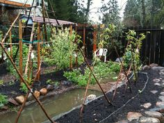 Permaculture- rain water collection using dry stream - protractedgarden Permaculture Principles, Permaculture Design, Farm Gardens, Outdoor Gardens, Veggie Gardens, Sustainable Design, Sustainable Living, Water Collection, Rainwater Harvesting