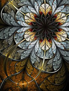 Fractals so often look like natural things, like flowers.  Or do flowers look like fractals?