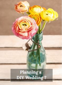 Want to know how to make your own bouquets, boutonnieres & centerpieces? Need to know where to buy wholesale flowers & vases?The DIY Wedding Planner apps provide convenient planning on all platforms including your Phone, Tablet and Computer! We have done all of the work for you and gathered all resources in one spot! No more searching the internet!Create Seating charts, checklists, rsvp software  recipes, music playlists, etiquette advice and so much more. #weddingflowers